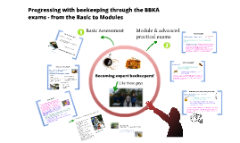 Copy of Progressing with beekeeping - from the Basic Assessment to Modules
