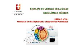 Clase Nº30 Unidad Nº10 Resíntesis de Triacilglicéridos y Lipoproteínas Plasmáticas