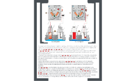 indicador temperatura agua con lampara testigo