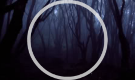 Film Music- Hedwig's Theme