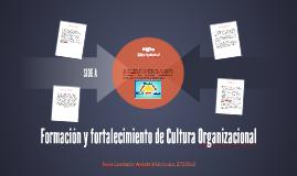 Formación y fortalecimiento de Cultura Organizacional