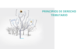 PRINCIPIOS DE DERECHO TRIBUTARIO