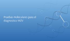 Pruebas moleculares para el diagnostico MZV