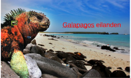 Copy of Galapagos eilanden