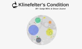 Klinefelter's Condition