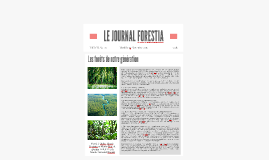 Le journal forestia