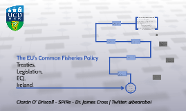 The EU's Common Fisheries Policy