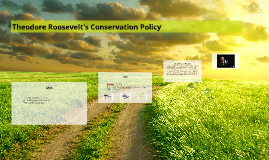 Theodore Roosevelt's Conservation Policy