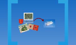 Ciekawe miejsca w Lubaczowie