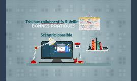 CAFEL- Feuille de route Travail Collaboratif et Veille