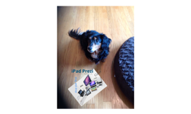 iPad Prezi Attempt