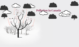 Pollution In Canada