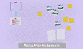 Moluscos, Antropodos y Equinodermos