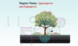 Kingdom Plantae: Gymnosperms and Angiosperms