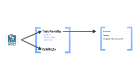 Modelo teórico de Fisioterapia Preventiva