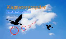 Magnetoception