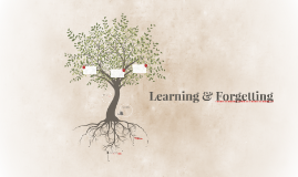 Learning & Forgetting