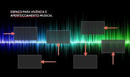 ESPAÇO PARA VIVÊNCIA E APERFEIÇOAMENTO MUSICAL