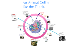 Copy of Cell Analogy to a Boat or the Titanic