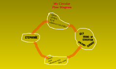 My Circular Flow Diagram