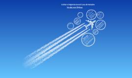 Copy of Cultura Organizacional (caso Southwest Airlines)