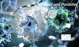 Mold and Parasites