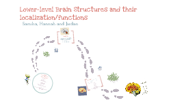 Lower-level Brain systems and Localization of Functions