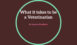 What it takes to be a Veterinarian