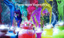 Copy of Pigmentos Vegetales