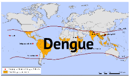 Copy of Dengue