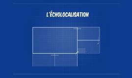 L'écholocalisation