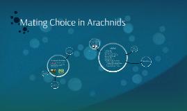 Mating Choice in Arachnids