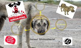 Animal Mistreatment