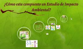 ¿Cómo se compone un Estudio de Impacto Ambiental?