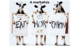 Copy of Copy of Marhahúsból készíthető ételek