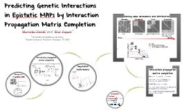 Interaction Propagation Matrix Completion