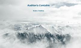 Rubro Créditos - Auditoría