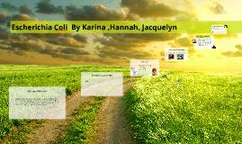 Escherichia coli (ECOLI) By Karina ,Hannah, Jacky