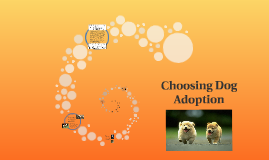 Choosing Pet Adoption