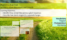 Plant & Ecology Unit