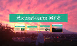Experience BPS