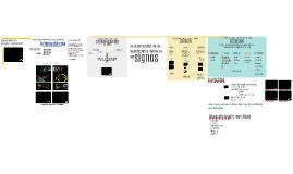 Arquitectura de un film: significantes, signos y códigos