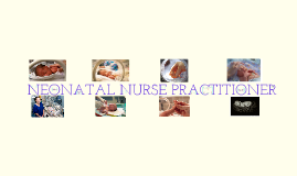 Neonatal Nurse Practitioner(NNP) Valeria Aleixo