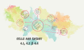 Cells and Energy