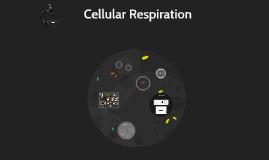 Cellular Respiration Experiment