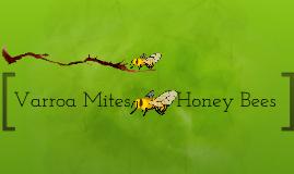 Copy of Varroa mites and Honey Bees