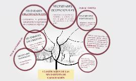 CLASIFICACIÓN DE LAS NECESIDADES DE CAPACITACIÓN