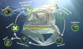 Degradability of Plastic Waste: Life Cycle Challenges and So