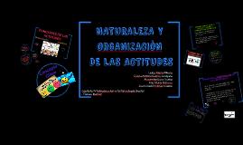 NATURALEZA Y ORGANIZACION DE LAS ACTITUDES