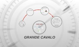Copy of GRANDE CAVALO